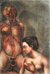 Jacques Gautier-d'Agoty, Anatomie des Parties de la generation de l'homme et de la femme
